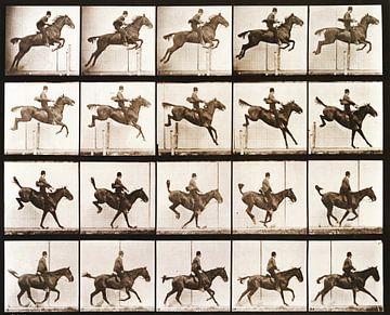 Paard en ruiter springen van Atelier Liesjes