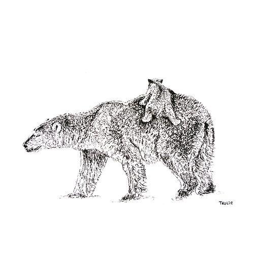 Beren smeren van Thomas Kos