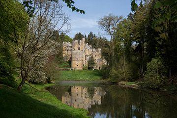 Schloss Beaufort von Ewan Mol