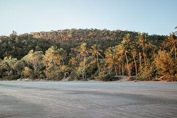 Zonsopgang op het strand in Cape Hillsborough van Amber Leeman