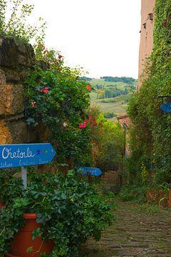 Paadje in het stadje Cordes-sur-Ciel van Atelier Liesjes