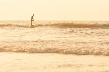 Le surfeur sur Fabrizio Micciche