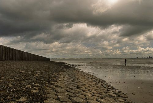 Donkere wolken, strand met strandhoofd