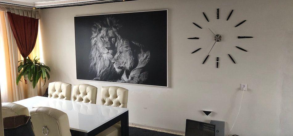 Kundenfoto: Lion von Ron van Zoomeren
