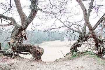 Das Tor zur Ebene des Sandes von Mascha Looije