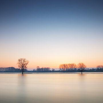 Wasser und Bäume von Ruud Peters