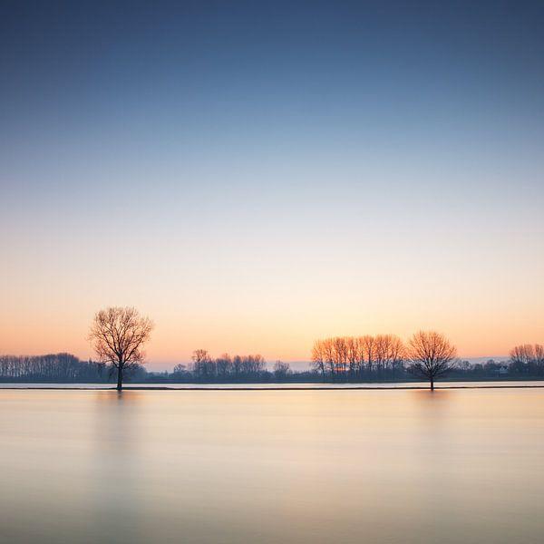 Water en Bomen van Ruud Peters