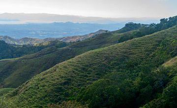 Costa Rica: Natuurgebied Sierra von Maarten Verhees