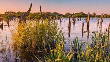 Zonsondergang in  nationaal park De Alde Feanen van Henk Meijer Photography
