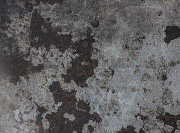 Tapete 1 von PAPARAzzSSI Freelance Fotografie