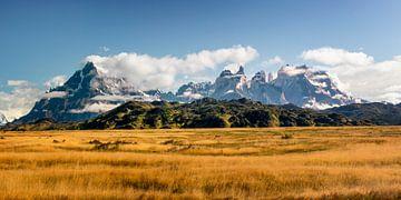 Torres del Paine van Dieter Meyrl