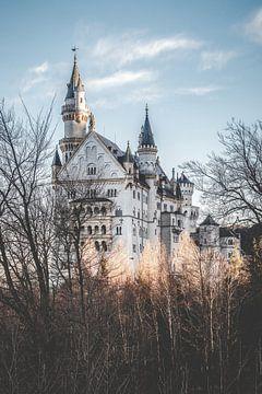 Schloss Neuschwanstein von Munich Art Prints