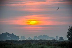 Zonsopgang in Friesland