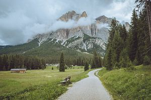 Wandelen door de bergen van Youri Zwart