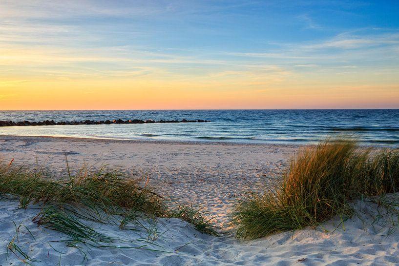 strandgenot van Daniela Beyer