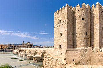 Oude historische brug over rivier in Cordoba, Spanje van