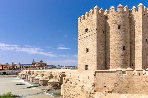 Oude historische brug over rivier in Cordoba, Spanje van Fotografiecor .nl