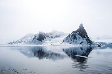 Het fragiele noordelijke poolgebied op Spitsbergen van