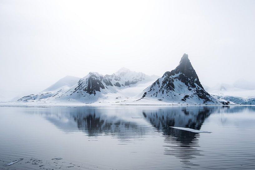 Het fragiele noordelijke poolgebied op Spitsbergen van Gerry van Roosmalen