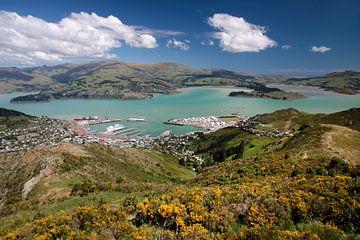 Vue de Lyttelton (Christchurch), Nouvelle-Zélande sur Christian Müringer