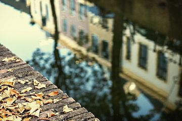 De Nieuwegracht in Utrecht in herfstkleuren (6) van