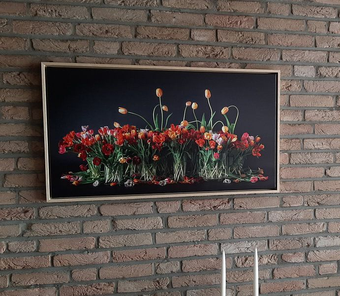 Photo de nos clients: Tulipes des Pays-Bas sur Dirk Verwoerd