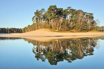 Eiland Bos - Henschotermeer van Willem van Leuveren Fotografie