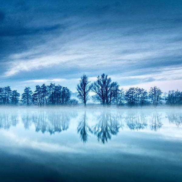 Blue hour trees van Ruud Peters