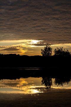De schoonheid van reflectie van Lieke Oppelaar