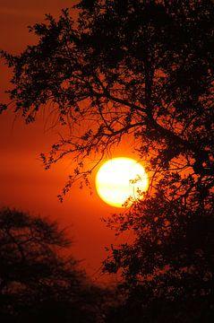 Sonnenuntergang in Namibia von Herman van Egmond