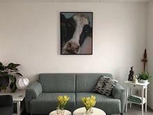 Klantfoto: Schilderij koe BoeHoe. van Alies werk, op canvas