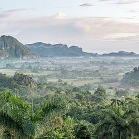 Uitzicht op Vinales-Vallei te Cuba van Celina Dorrestein