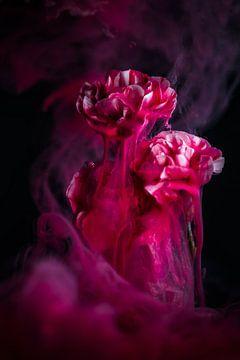 Magische bloemen van Steffen Gierok
