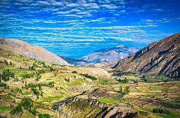 Landschap in de omgeving van Colca Canyon, Peru van Rietje Bulthuis