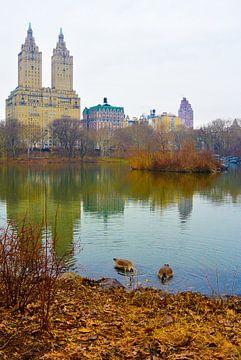 Das Naturgeschichte-Museum reflektierte sich im See im Central Park von Stefanie de Boer