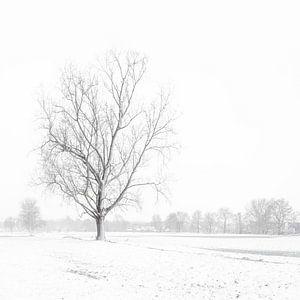 Sneeuwlandschap  in het vlakke land van Inez VAN DE WEYER