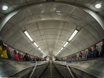 Underground sur Lex Schulte