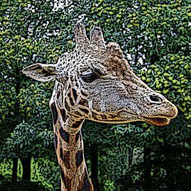 Giraffe van Jose Lok
