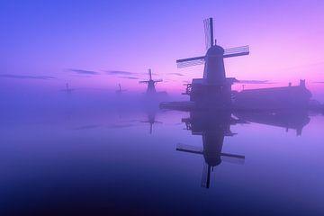 The awakening of the windmills
