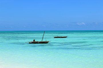 Zanzibar van