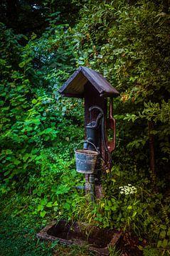 Oude waterpomp in de tuin van Patrick Dijkman