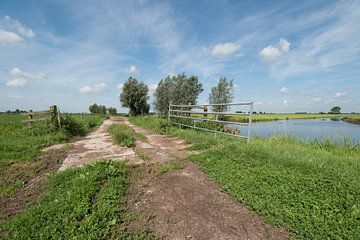 Pad langs vaart in poldergebied Alblasserwaard van Beeldbank Alblasserwaard