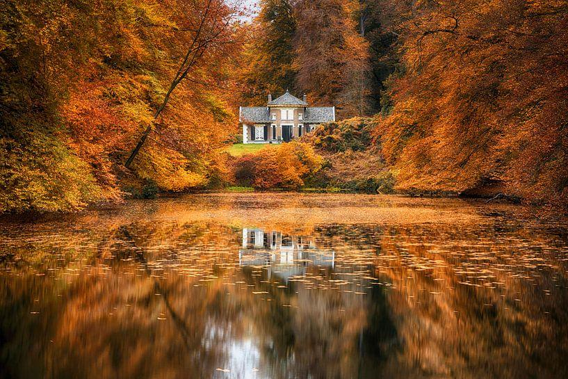 Herfst in park Zypendaal van Elroy Spelbos