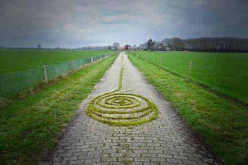 Spiralling Home