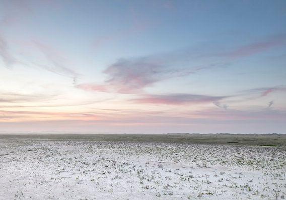 Dutch Prairie van Wad of Wonders