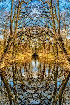 Symmetrie Landschaft mit Spiegelung von Bäumen im Herbst in einem Teich von Dieter Walther