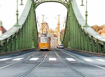 Budapest, Vrijheidsbrug van Joep Deumes