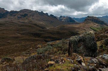 Ecuador: El Cajas National Park (Azuay) von Maarten Verhees