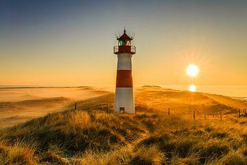 Golden Light on the Horizon von Ursula Reins