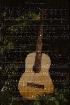 Melodie van de nacht van Christine Nöhmeier